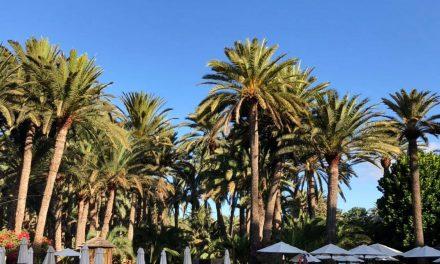 Gran Canaria – Mon séjour aux îles Canaries